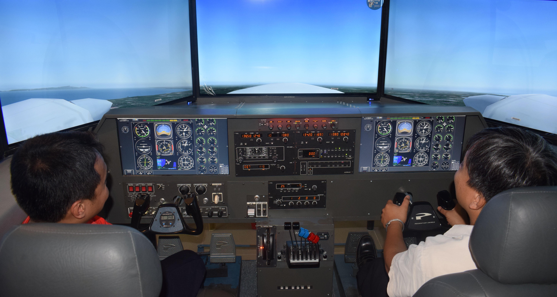 Precision Flight Controls-C2Pro BATD-Cat III